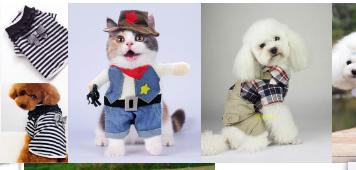 宠物衣服属于商标哪个类别