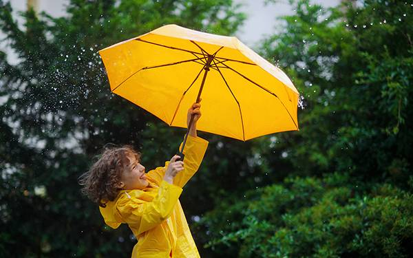 雨伞商标转让流程以及类别